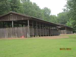 A couple of the horse barns