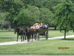 For an additional $11 you can take a horse drawn wagon ride around the grounds. Not a bad idea on hot days but we chose to walk.