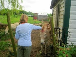 Diane found a friend!!