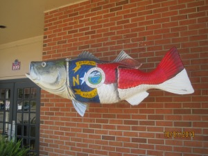 This fish was hanging in front of the police dept. in Weldon North Carolina