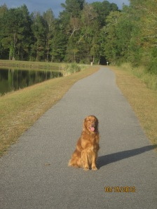 Jack will miss the great 1 mile walking trail around the lake!!
