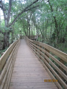The boardwalk wanders all through the lake area and has many great viewing spots. Heck, the entire thing is a great viewing area.