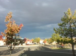 It was a nice sunny day but the dark clouds were rollin in