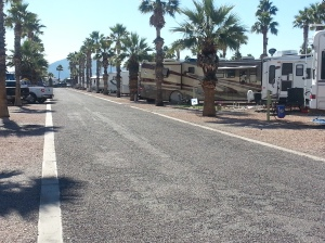 At typical row here at Saddle Mountain RV Park
