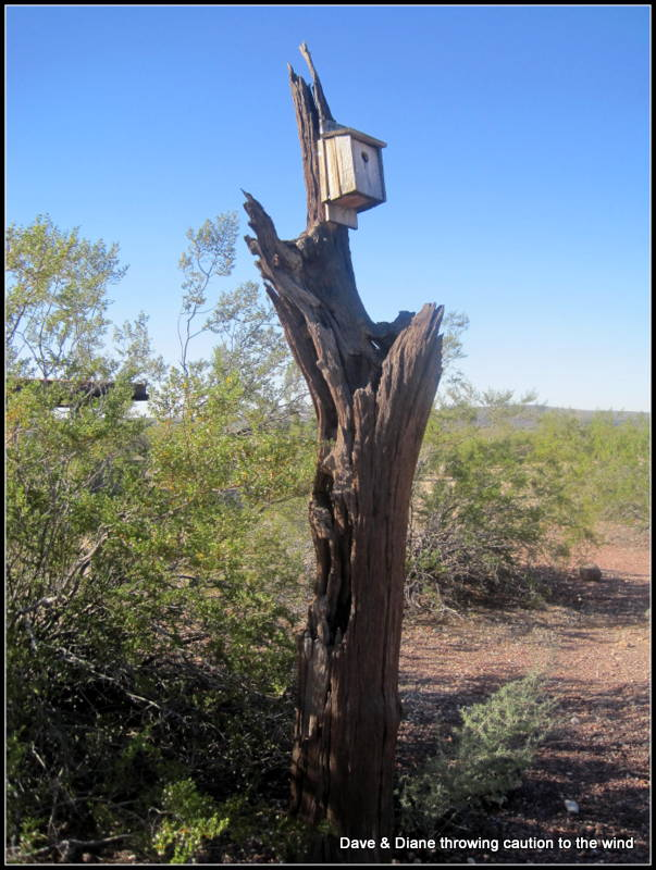 And this is the birds campsite LOL!!!