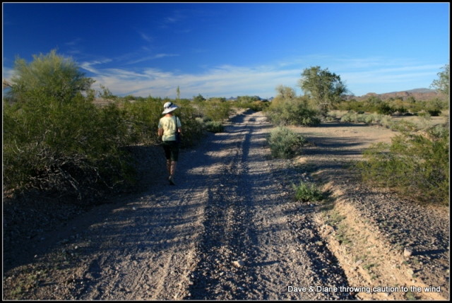This road leads to the corral but there are some good spot to branch off and hike in the desert.