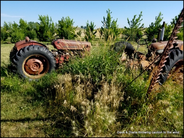 I can't help myself, I have a thing for old tractors.